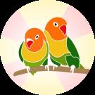 logo_round_512x512